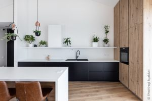 virtuve-vonia-PB35_35
